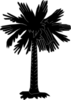 Black And White Palmetto Clip Art