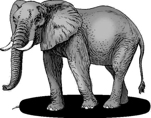 elephant head clipart - photo #48