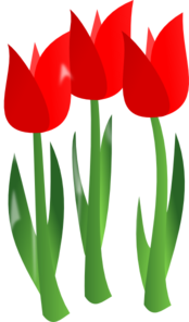 Red Tulips Clip Art