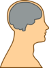 Man Brain Grey Clip Art