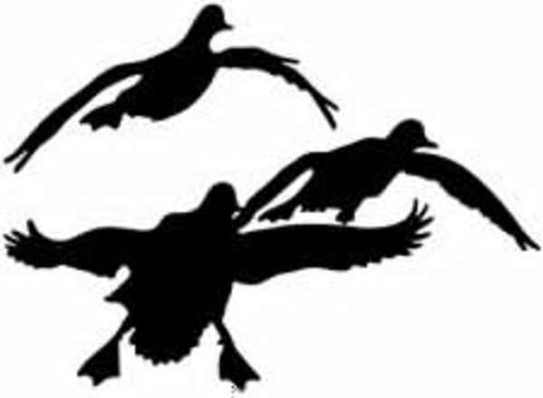 Free Clipart Duck Hunting | Free Images at Clker.com ...  Free Clipart Du...