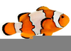 Download Free Fish Clipart Image