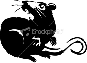 Stock Illustration Hissing Rat Image