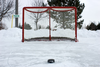 Hockey Net And Puck Image