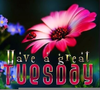 Have A Nice Day Clipart Image