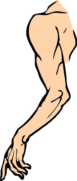 Arm Clip Art at Clker.com - vector clip art online ...