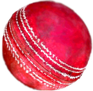 Cricket Ball Image