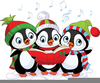 Cute Penguin Christmas Clipart Image