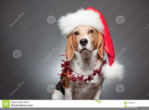 Christmas Beagle Clipart.Beagle Christmas Clipart Free Images At Clker Com Vector