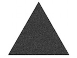 Trianglewhitebacksmall Image