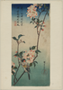 Small Bird On A Branch Of Kaidōzakura. Image