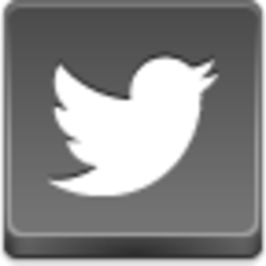 Free Grey Button Icons Twitter Bird Image
