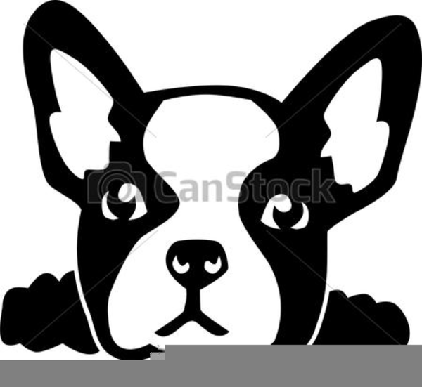 Bulldog Head Clipart Free Images At Clker Com Vector Clip Art