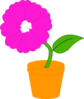 Daisy In A Flower Pot  Illustration Clip Art