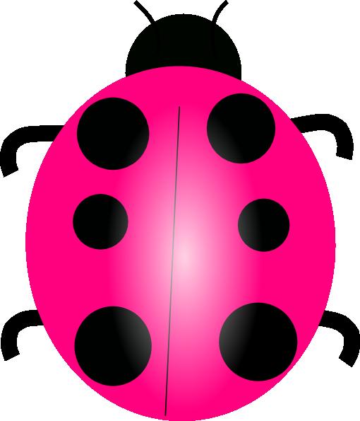 Pink ladybug - photo#27