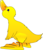 Young Duck Clip Art