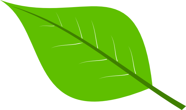 free clipart green leaf - photo #3
