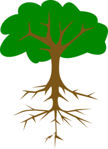 Tree With Long Taproot Clip Art