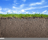 Grass And Soil Clipart Image