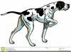 Free Hunting Dog Clipart Image