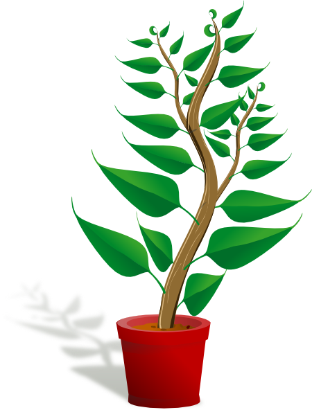 Http Www Clker Com Clipart Tall Plant In Pot Html