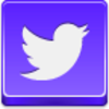 Free Violet Button Twitter Bird Image