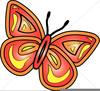 Butterfly Watermark Clipart Image