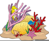 Coral Reef Clipart Border Image