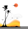 Palm Tree On Beach Clipart Image