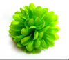 Lime Green Flowers Image