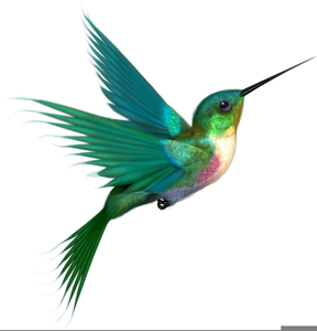 free clipart hummingbird free images at clker com vector clip rh clker com free hummingbird clip art images hummingbird clipart free download