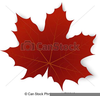 Red Maple Leaf Clipart Image