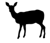 Deer Clipart Funny Image