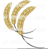 Wheat Or Barley Clipart Image