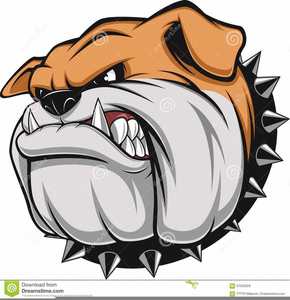 Free Bulldog Head Clipart Free Images At Clker Com Vector Clip