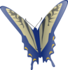 Blue And Gray Butterfly Clip Art