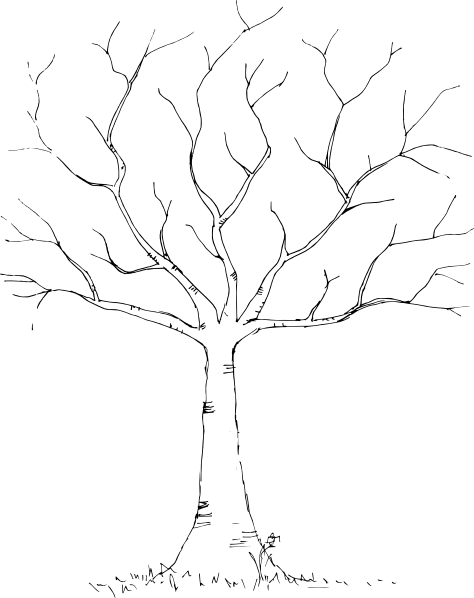Tree Black White Clip Art at Clker vector clip