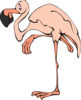 Cartoon Flamingo Clip Art
