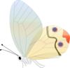 Transparent Butterfly Clip Art