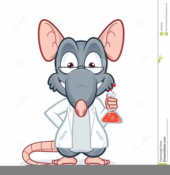 Lab Rat Clipart | Free Images at Clker.com - vector clip ...