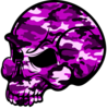 Skull Pink Camouflage Image