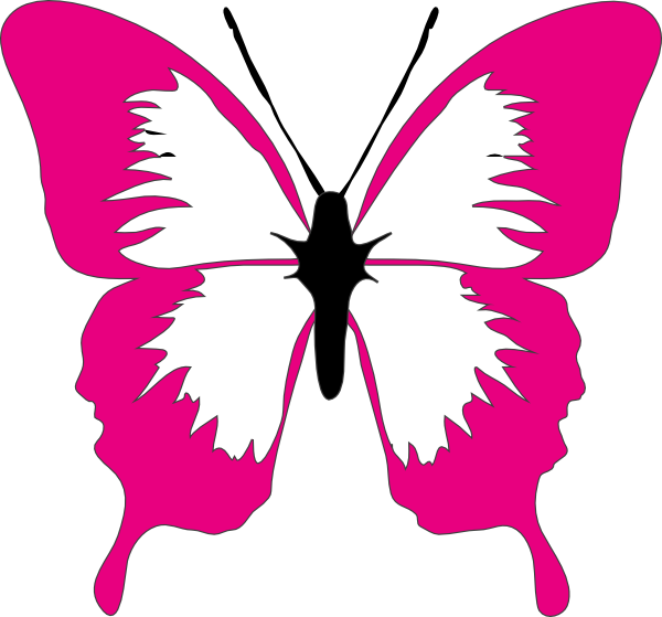 butterfly clip art at clker com vector clip art online royalty rh clker com Pink Cartoon Butterfly pink and green butterfly clipart