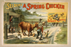 Selden S Funny Farce, A Spring Chicken Image