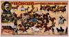 Prof. E.k. Crocker S Educated Horses, Ponies, Donkeys & Mules Image