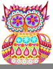 Colorful Owl Pictures Image