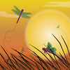 Dragonfly Sunset Background Image