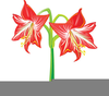 Flower Tattoo Clipart Image