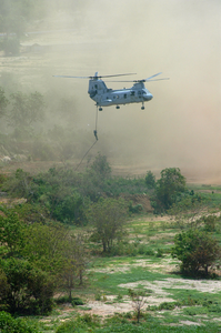 Cobra Gold - Fast Roping From A Ch-46 Image