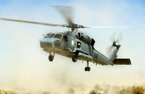 A Hh-60 Seahawk Helicopter Takes Off During A Search And Rescue Exercise As Part Of Desert Rescue Xi, Image