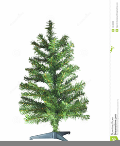 Free Clipart Christmas Tree Black And White Image